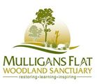 Mulligans Flat Woodland Sanctuary